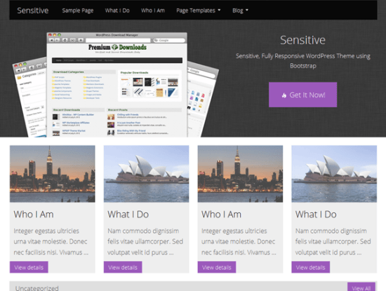 sensitive-theme-wordpress