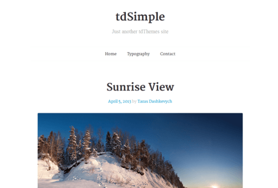 tdsimple-wordpress-theme-gratis