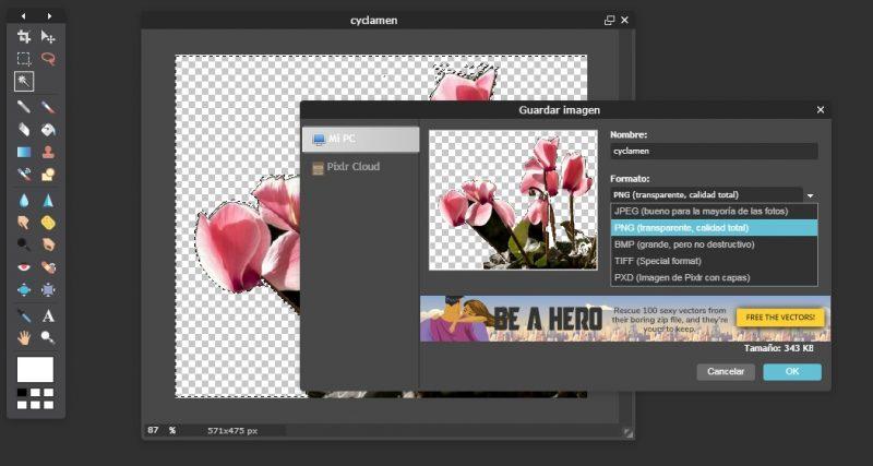 Eliminar fondo fotografia online