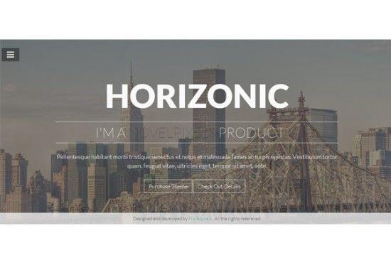 horizonic-theme-1-pagina