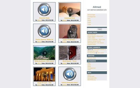 allmed-wordpress-video-theme