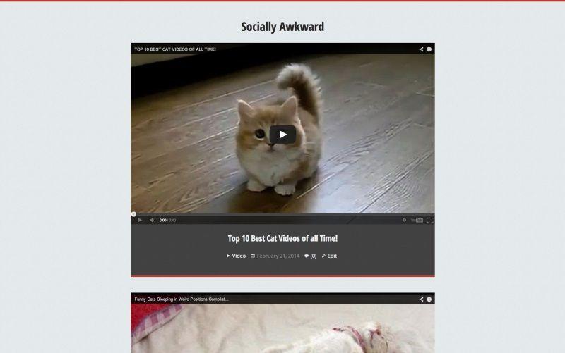 Themes de vídeo gratis para WordPress