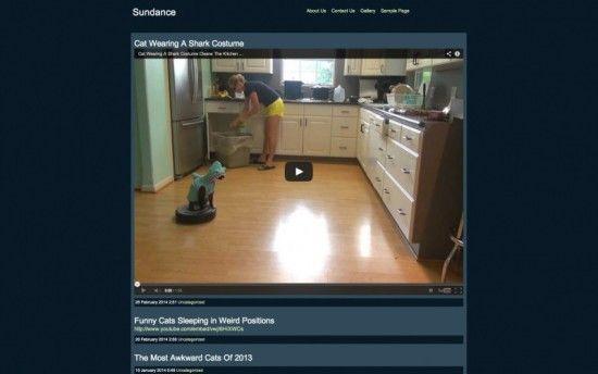 webvideo1-theme-wordpress-video