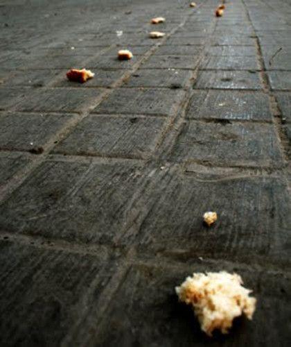Qué son las breadcrumbs y cómo las instalo en WordPress