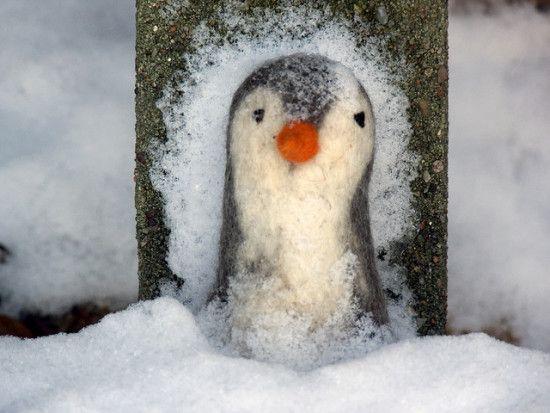posicionamiento-google-penguin