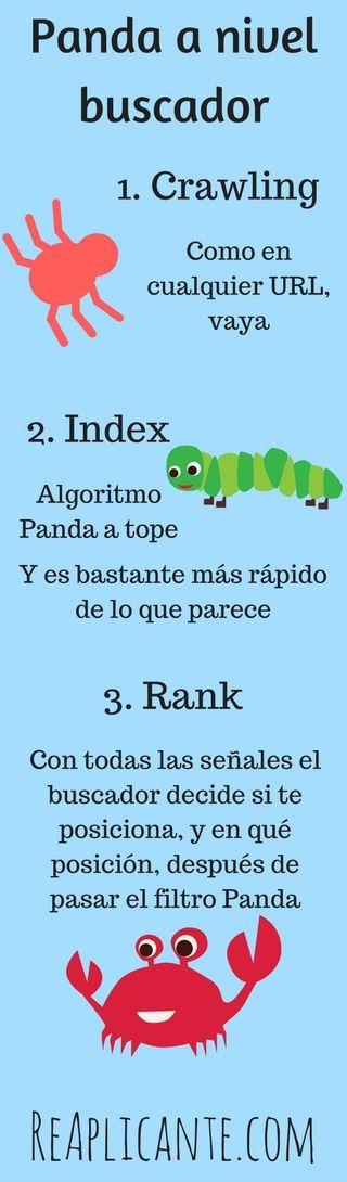 panda-nivel-buscador