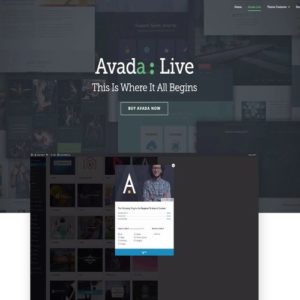 wordpress-theme-avada