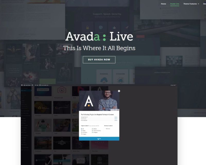 wordpress-theme-avada-home
